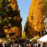 東大の学園祭駒場祭