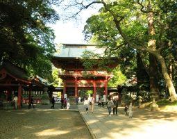 伊沢拓司の出身地は茨城で親は?かっこいいが身長や彼女は誰