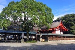 宗像大社初詣2018の参拝時間や混雑の予想時間と回避方法