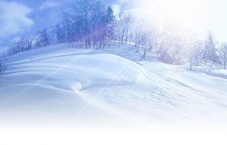 小林陵侑のスキー板のメーカーは?兄弟でスキージャンプ選手