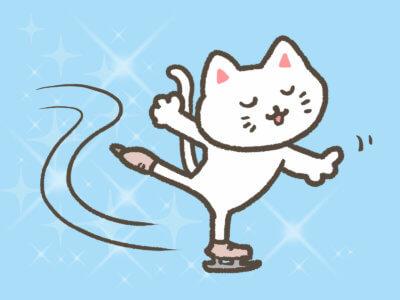 スケートリンク(東京)で屋内の安いランキング5!通年で滑れる所も紹介