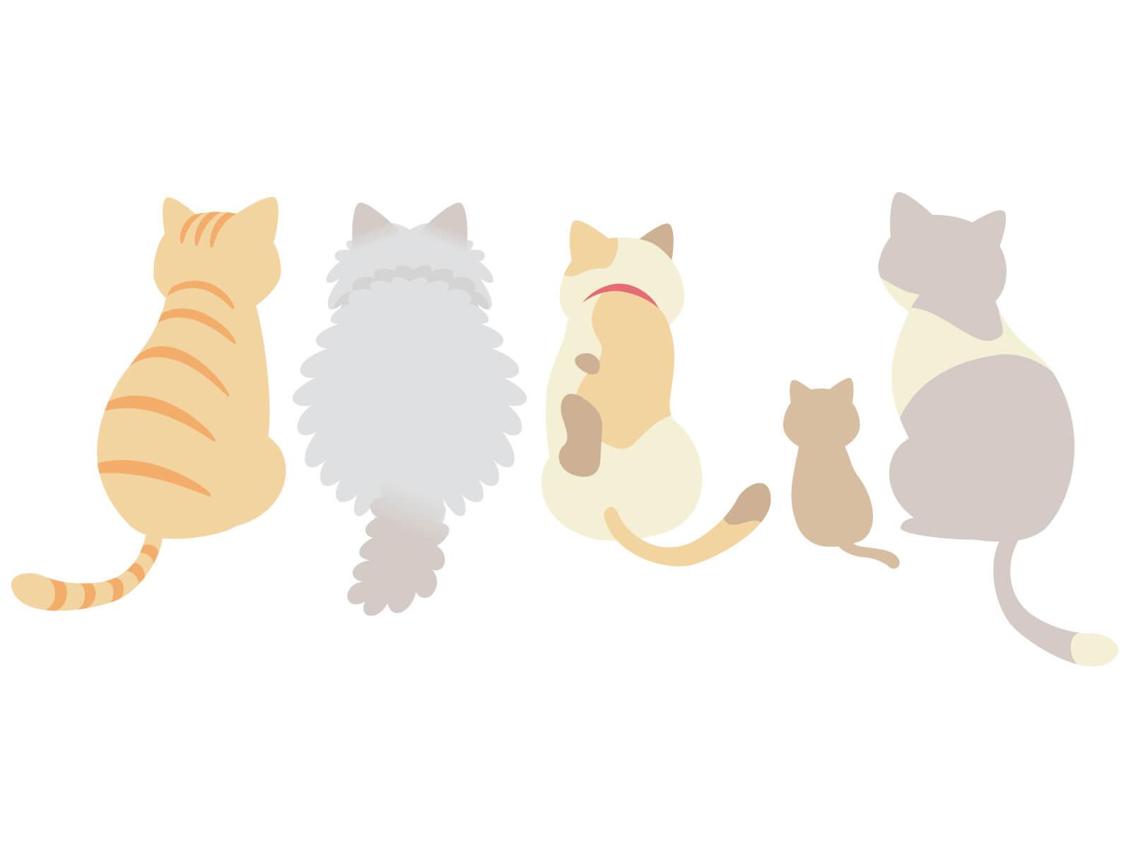 カルカンのcmの子猫の種類や女優は?歌詞もかわいい!
