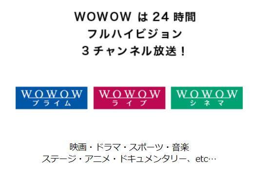 グッドドクター韓国ドラマ版のWOWOWでの放送日程は?