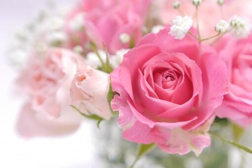 dele(ディーリー)の5本のバラの花言葉は?