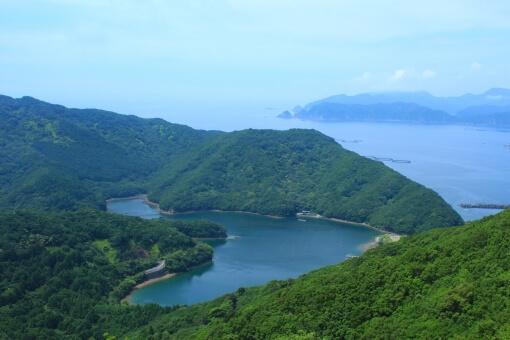 青夏のロケ地は三重県の山・川・ひまわり畑!バスや車でのアクセスは?